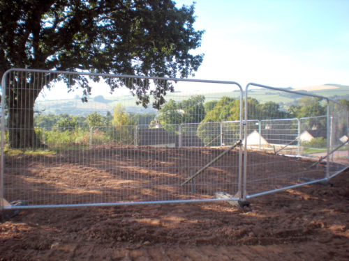 Tree protected by fencing